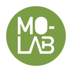 Molab Thinkers